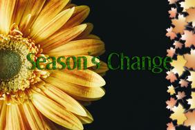 Season's Change: Fall Template