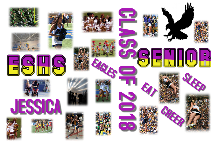 senior day cheer poster template postermywall