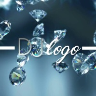 Silver DJ Musicians Producer Video Logo template