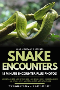 Snake Encounters Poster