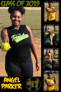 Softball Plakat template