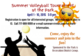 Sport Flyer - Volleyball