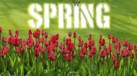 Spring 2021 Digital Display Video Ekran reklamowy (16:9) template