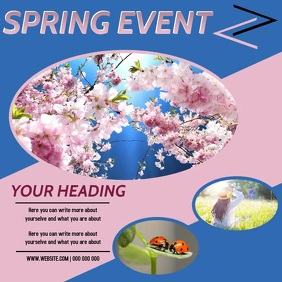 SPRING AD DIGITAL VIDEO SOCIAL MEDIA