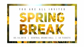 Spring Break Digital Display Ad Video
