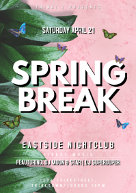 Spring Break Party Event Bar Club Poster Ad