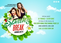 Spring Break Party Postcard Postkort template
