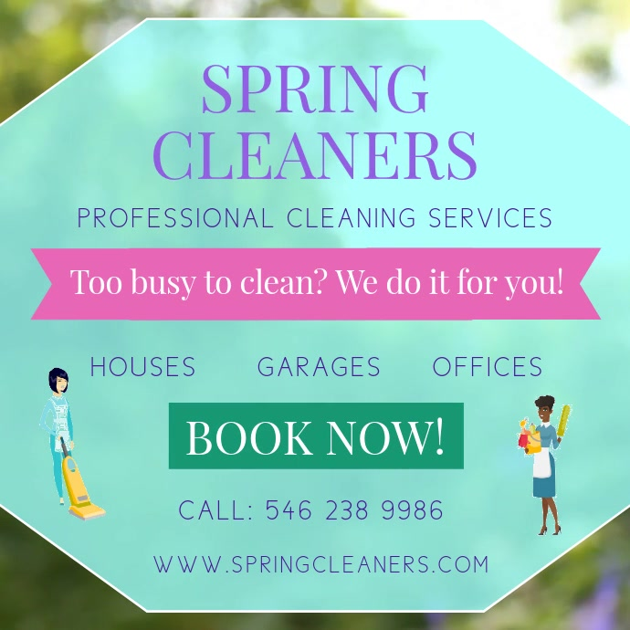 Spring Cleaners Professional Services Instagram Ad