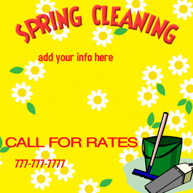 spring cleaning maid cleaning service