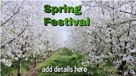 spring 数字显示屏 (16:9) template