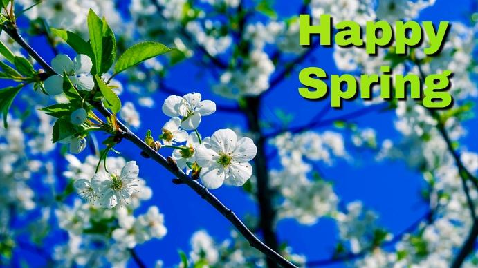 spring Affichage numérique (16:9) template