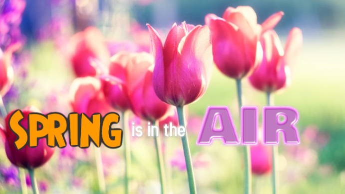 spring Digitalt display (16:9) template