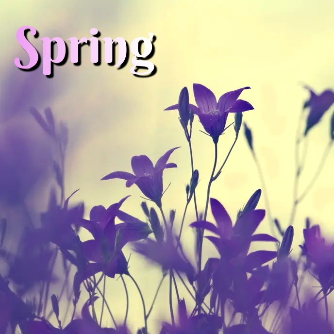 spring Sampul Album template