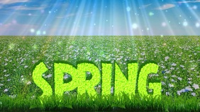 Spring Digital Display Video Digitalanzeige (16:9) template