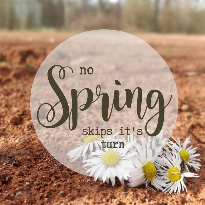 Spring instagram