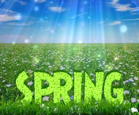 Spring Large Rectangle template