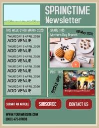 SPRING NEWSLETTER Pamflet (VSA Brief) template