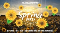 Spring Party Digital Display Video