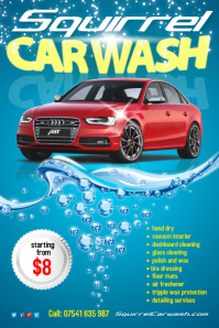Squirrel Carwash Flyer II