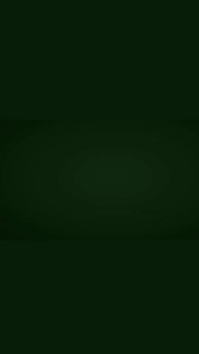 St. Patricks day sale template