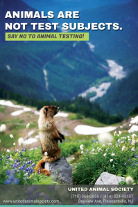 Stop Animal Testing Poster Template