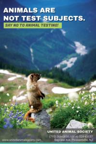 Stop Animal Testing Poster Template