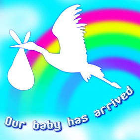 stork baby arrival announcement - message image template for instagram post