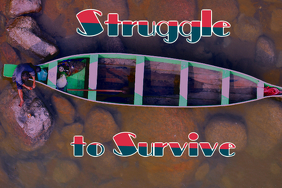 struggle to survive #01