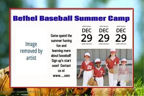 Summer Baseball Summer Camp Sports Poster Schedule Team