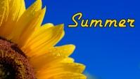 Summer Canvas LMS Blackboard Banner Header ส่วนหัวบล็อก template