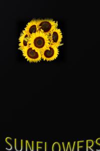 SUNFLOWERS & FRIENDSHIP custom poster #sunflowers #floral