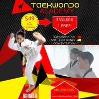 taekwondo1insta video