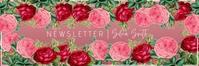template mail header roses newsletter En-tête d'e-mail