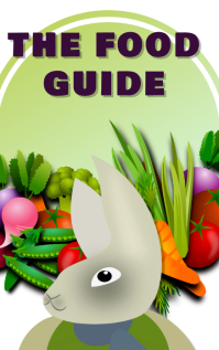 The food guide