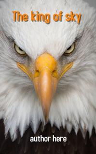 the king of sky eagle Copertina di Kindle template