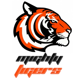 TIGER TEAM SPORTS SPORT ICON LOGO DESIGN