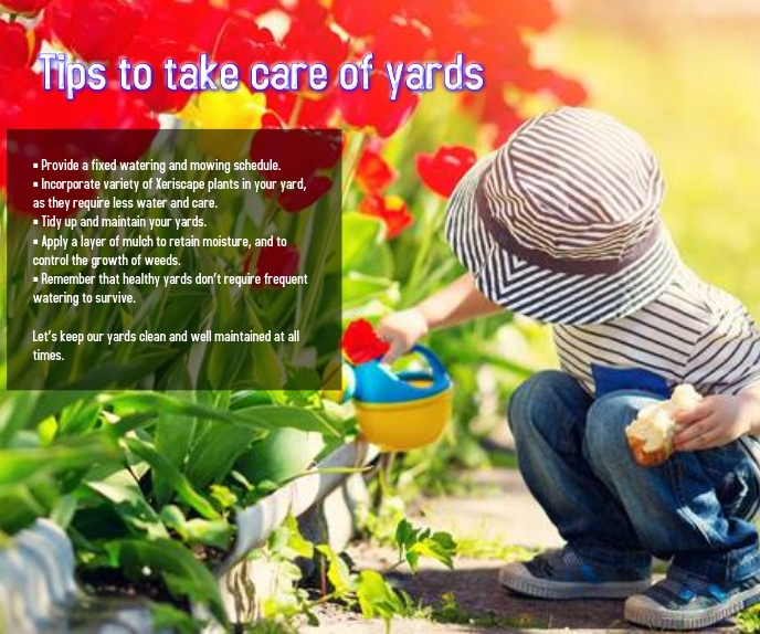 tips to take care of yards Grote rechthoek template