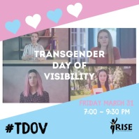 Transgender day of visibility Instagram post