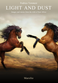 Travelogue Memoir Kindle Book Cover Template