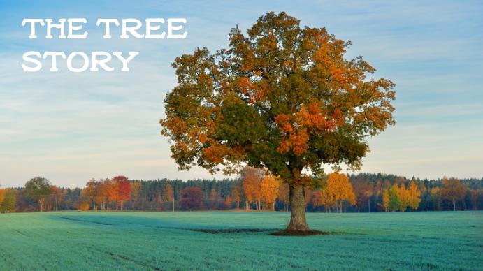 tree YouTube 频道封面图片 template