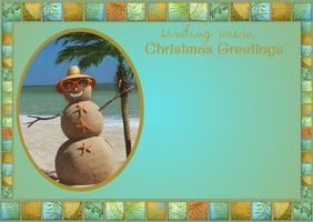Tropical Christmas Post Card