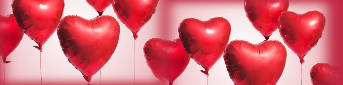 VALENTINES DAY Banner 2 x 8 fod template