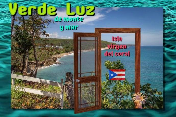 verde luz/Puerto Rico/isla/island/beach Poster template