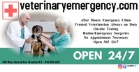 Veterianary Cliinic/Emergency/Pets Facebook Shared Image template
