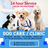 Vetinary dog care poster Square (1:1) template