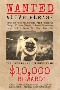 photo about Printable Lost Pet Flyer known as Create Lost Canine Flyers within just Minutes PosterMyWall
