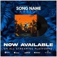 Vinyl Disc Now Available Album Cover Template Portada de Álbum