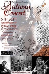 violin concert6