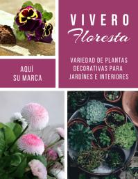 volante para venta de plantas decorativas Pamflet (VSA Brief) template