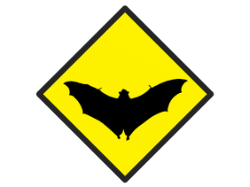 with bat flying - warning template